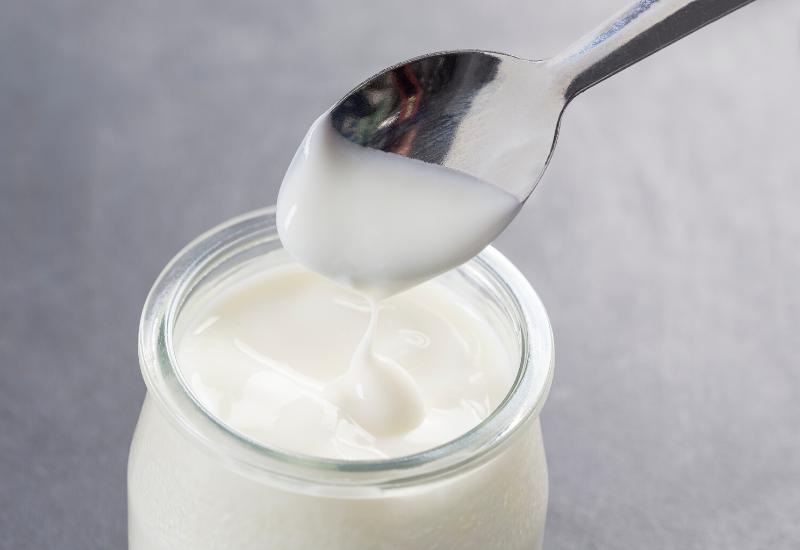 guide d'achat de yaourtières